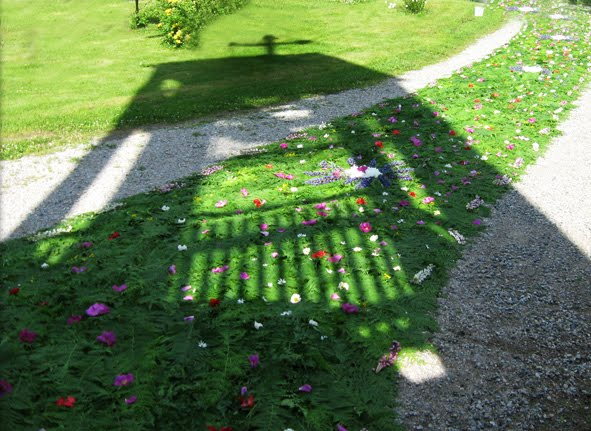 Flower carpet  in Lintula convent