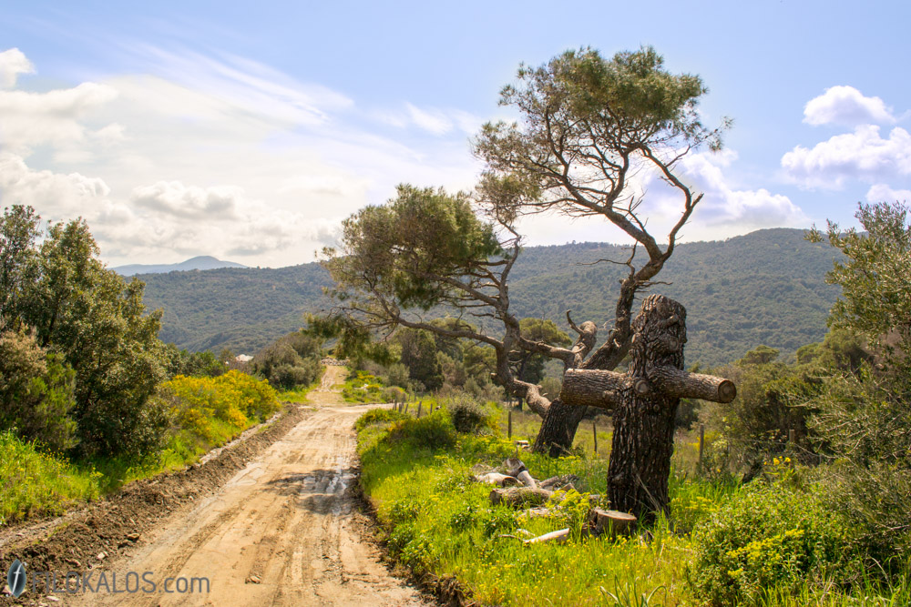 Athonite roads