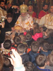 PedjaVid   Patriarch and children