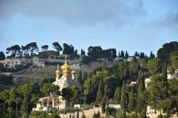 AM  Russian Monastery  of St. Mary Magdalene - the Mount of Olives  2018-07-10 23:43:52