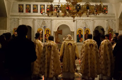 Sheep1389  Sahraniyya (all-night vigil) for st. Ephrem the Syrian in Baskenta  24  2019-02-14 10:31:38