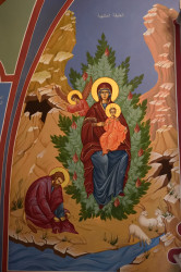 Sheep1389   The Burning Bush seen by Moses - monastery An-Nouriyyeh